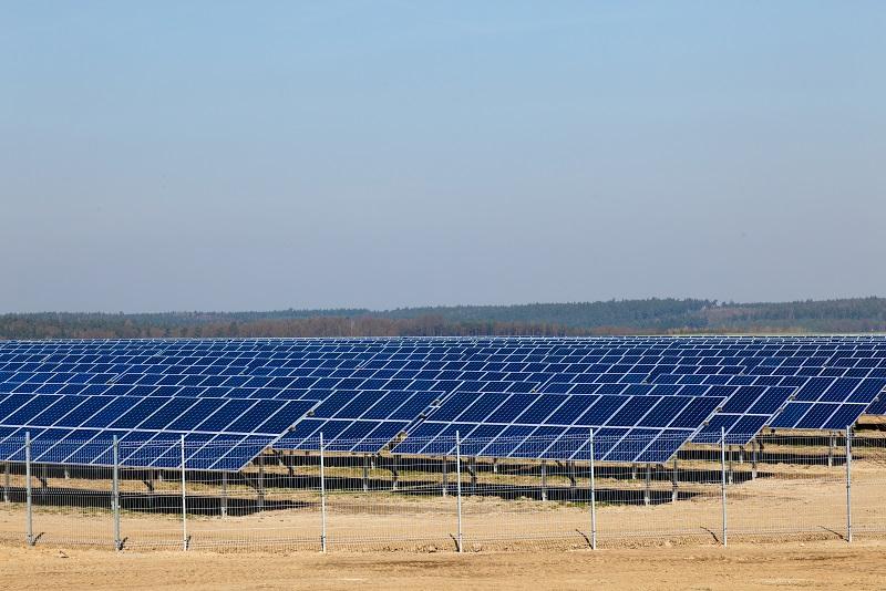 Semarnat niega permiso a Parque Fotovoltaico Oxcum-Umán en el estado de Yucatán