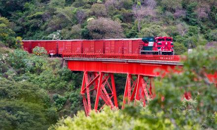 En 2020 Grupo México Transportes invertirá más de 466 md en infraestructura