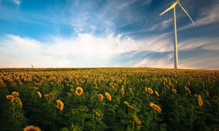 Avanza ley climática en España; impulsa energías renovables